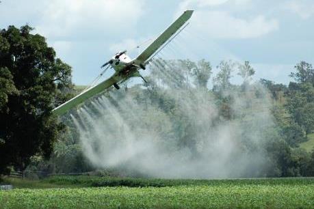 Hàng chục học sinh và giáo viên bị ngộ độc do hít phải thuốc diệt cỏ