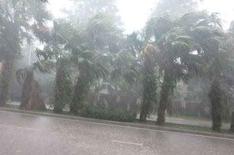 Dự báo thời tiết 20/5: Miền Bắc nắng nóng chiều tối mưa dông