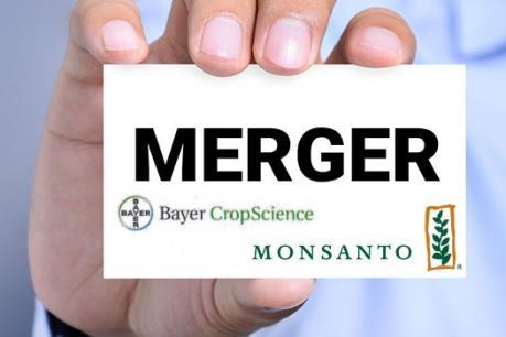 Tập đoàn Bayer lên kế hoạch thâu tóm đối thủ Monsanto