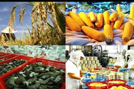 5 tháng, xuất khẩu nông lâm thủy sản đạt hơn 12 tỷ USD
