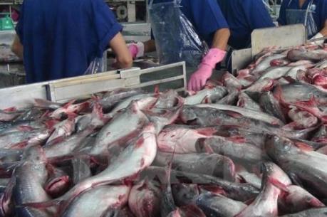 Kết thúc cuộc chiến cá da trơn tại Thượng viện Mỹ: Tin vui cho Việt Nam