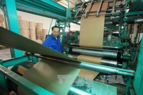 Kết luận của Thủ tướng về phương án cổ phần hóa Tổng Công ty Giấy Việt Nam
