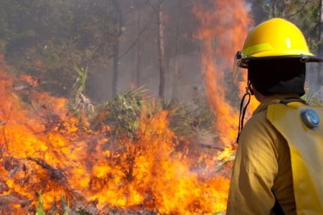 Lính cứu hỏa Mỹ và Nam Phi hỗ trợ dập tắt cháy rừng tại Canada