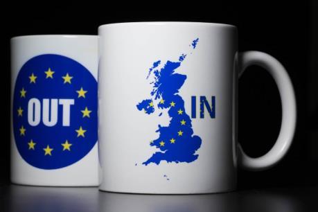 """Pháp, Đức chuẩn bị """"Kế hoạch B"""" cho EU sau trưng cầu dân ý """"Brexit"""""""