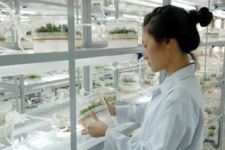 Doanh nghiệp Việt chưa đủ sức đầu tư cho khoa học công nghệ