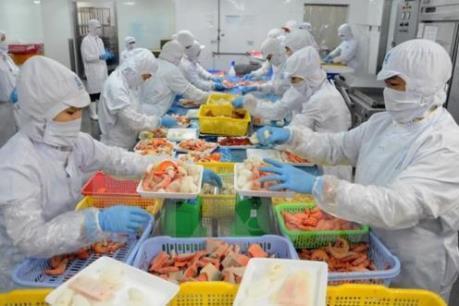 Sài Gòn Food khẳng định không xuất khẩu cá điêu hồng sang Australia