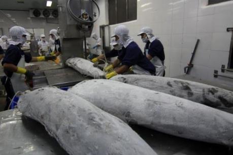 VASEP: Vụ cá chết không ảnh hưởng đến hải sản xuất khẩu