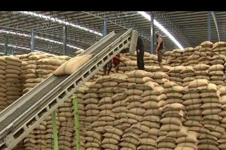 Thái Lan kỳ vọng vào mục tiêu xuất khẩu 9,5 triệu tấn gạo trong năm nay