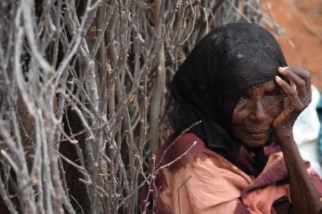 An ninh lương thực bị đe dọa bởi hạn hán và xung đột