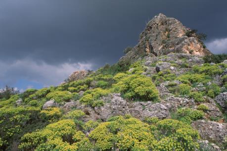 Phát hiện dấu tích lò nung thủy tinh 1.600 năm tuổi ở Israel