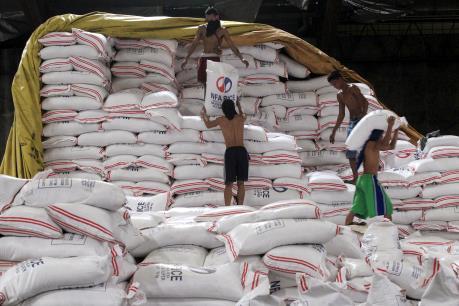 Philippines chưa nhập khẩu gạo trong những tháng tới