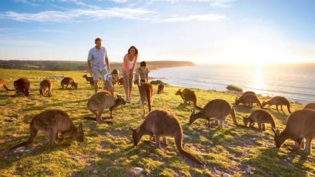"""Ngành du lịch Australia """"bội thu"""" nhờ đồng nội tệ mất giá"""