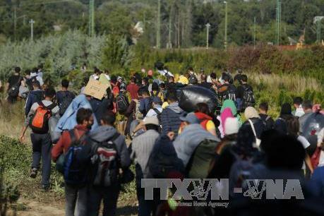Vấn đề di cư: EC lo ngại nguy cơ đổ vỡ thỏa thuận giữa EU và Thổ Nhĩ Kỳ