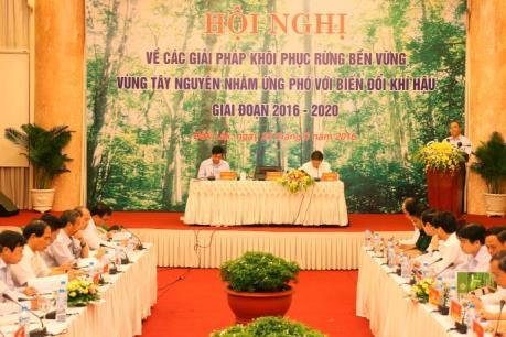 Chính phủ tuyên bố đóng cửa rừng tự nhiên