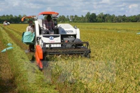 Ba thương vụ sáp nhập lớn trong ngành hóa nông thế giới