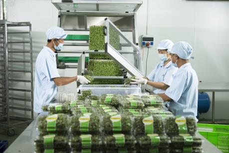 Mỗi năm tăng thêm 10% số lượng doanh nghiệp nông nghiệp