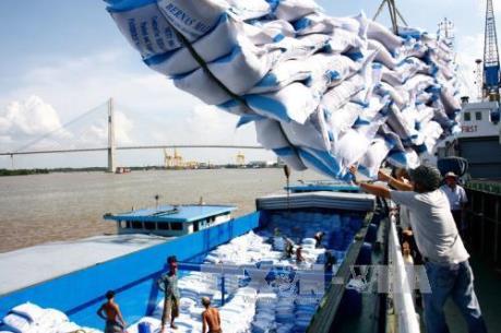 Ưu tiên xuất khẩu gạo chất lượng cao
