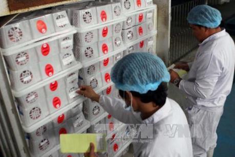 Hà Nội chiếu xạ lô vải xuất khẩu đầu tiên