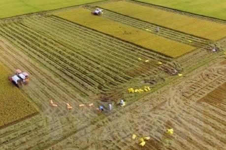 """""""Làng nông nghiệp thần kỳ"""" của Nhật Bản mong muốn tăng cường hợp tác với Việt Nam"""
