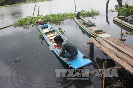 Xử phạt các cơ sở sản xuất gây ô nhiễm sông Vàm Cỏ Đông