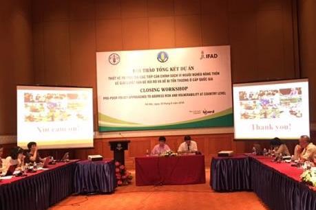 Thiết kế và thực thi các tiếp cận chính sách vì người nghèo nông thôn