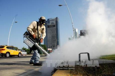 Thái Lan bác tin dịch Zika đang lan rộng