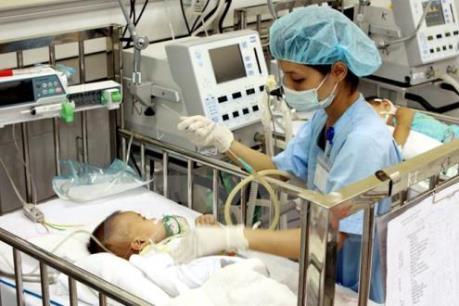 Tháng 6 -7 là tháng cao điểm dễ mắc bệnh viêm não Nhật Bản