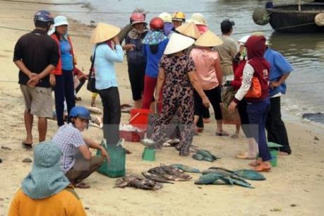Người dân Quảng Bình: Sự cố môi trường cần được giải quyết nhanh chóng