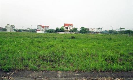 Hải Phòng: Kỷ luật lãnh đạo xã Tam Cường, huyện Vĩnh Bảo