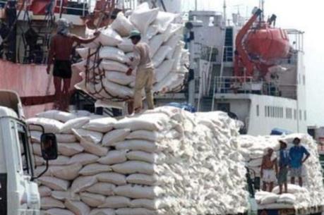 Campuchia: Xuất khẩu gạo giảm trong nửa đầu năm nay