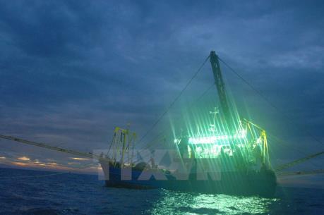 Tàu hải quân Thái Lan bắn vào tàu cá Việt Nam làm ngư dân bị thương
