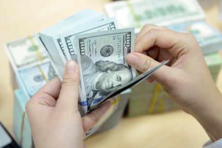 Tỷ giá trung tâm ngày 12/7 tăng 14 đồng
