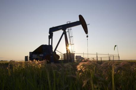 Giá dầu thế giới ngày 12/7 hồi phục từ mức thấp trong hai tháng