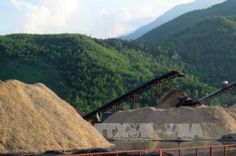 Xuất khẩu dăm gỗ đối mặt với khó khăn kép