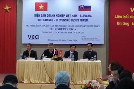 Việt Nam-Slovakia tăng cường hợp tác giao thương
