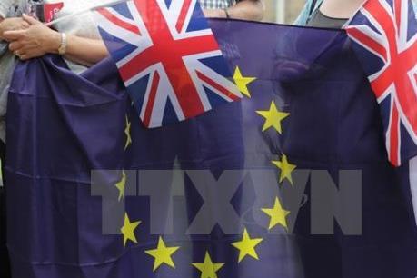 Vấn đề Brexit: Đảng Bảo thủ tại Scotland phản đối trưng cầu ý dân về nền độc lập