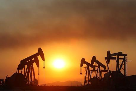 Giá dầu chiều 20/7 tăng do các hoạt động săn hàng giá rẻ