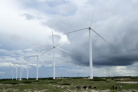 EU bảo trợ đầu tư vào lĩnh vực năng lượng tái tạo
