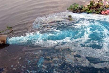 Xả thải gây ô nhiễm môi trường, Greenfarm Hưng Yên bị phạt hơn 200 triệu đồng