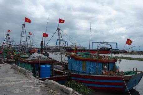 Ứng phó với bão số 7: Thái Bình đưa tàu thuyền vào nơi tránh bão