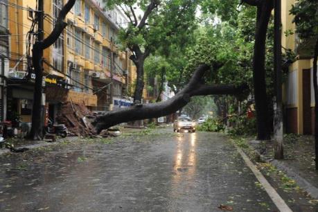Ảnh hưởng của bão số 1: Mất điện tại nhiều khu vực của Thủ đô