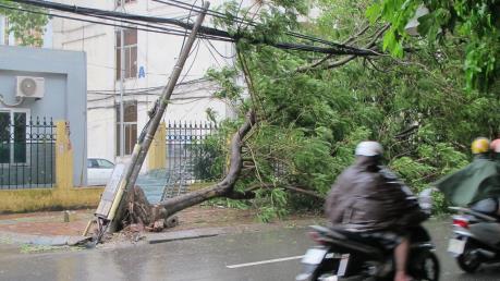 Ảnh hưởng của bão số 1: Đã khôi phục cấp điện nhiều khu vực ở miền Bắc