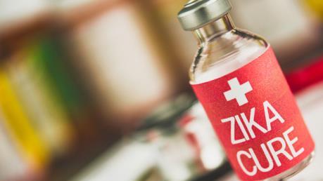 Phát hiện kháng thể có thể giúp sản xuất vaccine phòng virus Zika