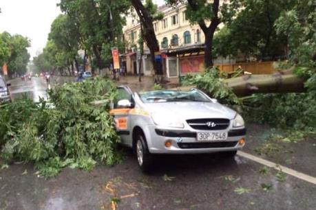 Thống kê những thiệt hại sau bão số 1