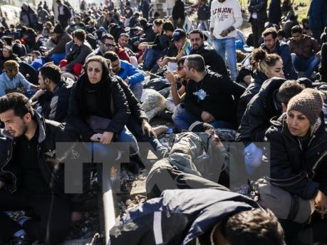 Các chính sách nhập cư châu Âu và hệ lụy