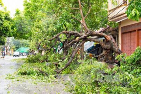 Bộ Giao thông Vận tải khắc phục thiệt hại do mưa bão