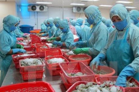 Xử lý nghiêm vụ cấp phép khống hơn 800 sản phẩm thuỷ sản theo quy định pháp luật