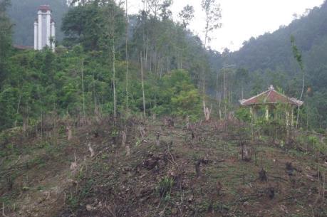 Vụ phá rừng ở Khuôn Mánh, Thái Nguyên: Kỷ luật cán bộ kiểm lâm