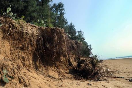 Biến đổi khí hậu: Nước biển xâm thực đe dọa cuộc sống người dân Kiên Giang