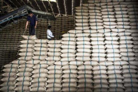 """Thái Lan giành lại vị trí """"quán quân thế giới"""" xuất khẩu gạo"""